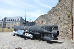 Brest Seehund 01