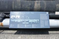 Brest Seehund 02