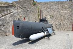 Brest Seehund 03