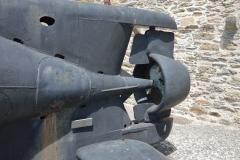 Brest Seehund 05