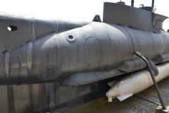 Brest Seehund 09