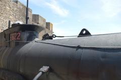 Brest Seehund 10