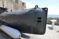 Brest Seehund 12