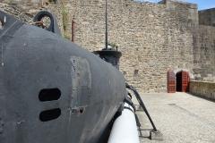 Brest Seehund 13