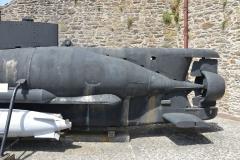 Brest Seehund 14