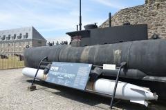 Brest Seehund 15