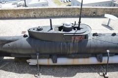 Brest Seehund 16
