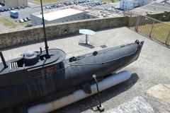 Brest Seehund 18
